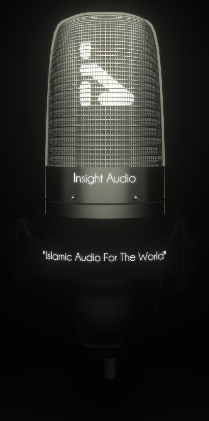 Insight Audio Big Mic!